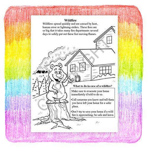 25 Pack - Learning Natural Disaster Safety Kids Coloring and Activity Books - ZoCo Products