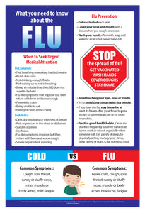 What You Need to Know About the Flu Poster - Laminated