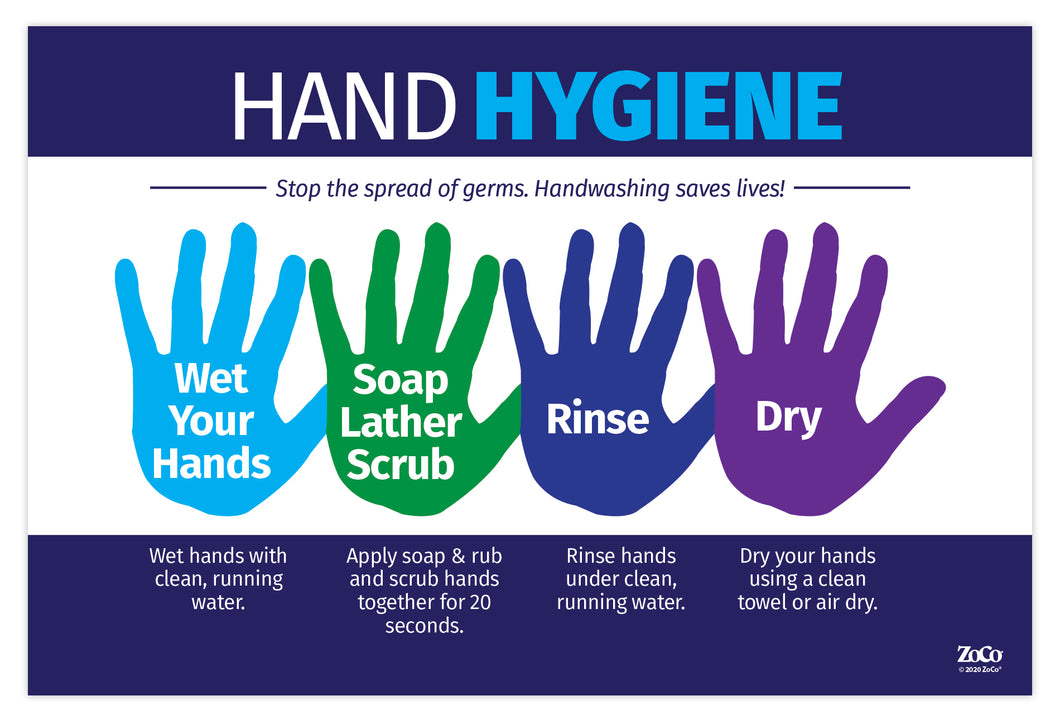 Hand Hygiene Poster - 12x18 - Laminated