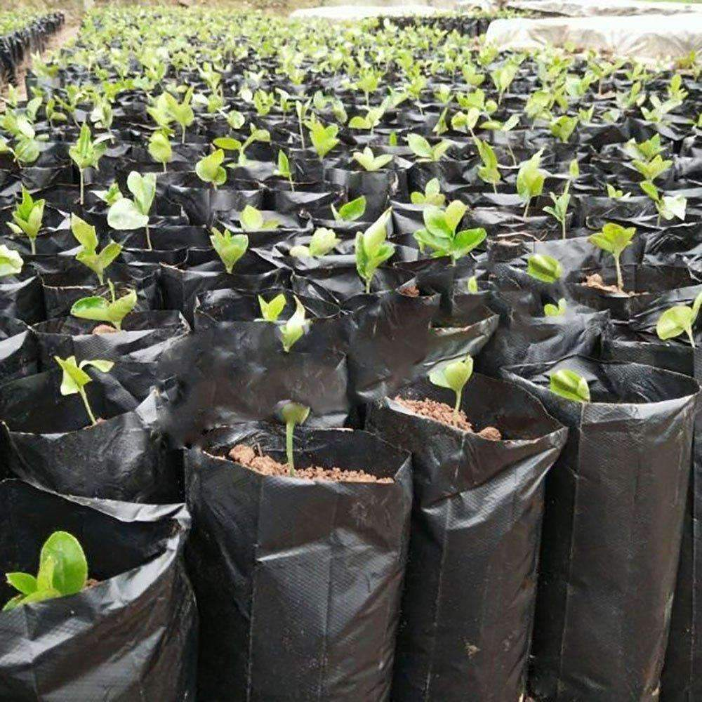 Plastic Nursery Bag For Soil, Coco Coir, Grodan (25pcs)