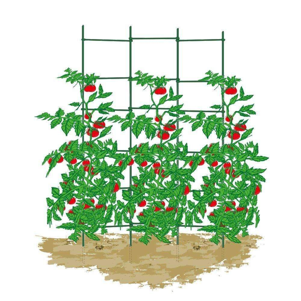 Expandable Trellis with 50pcs of 6'' Sturdy Twist Tie, 4pcs of 5/16''60'' Stakes, 1 Set