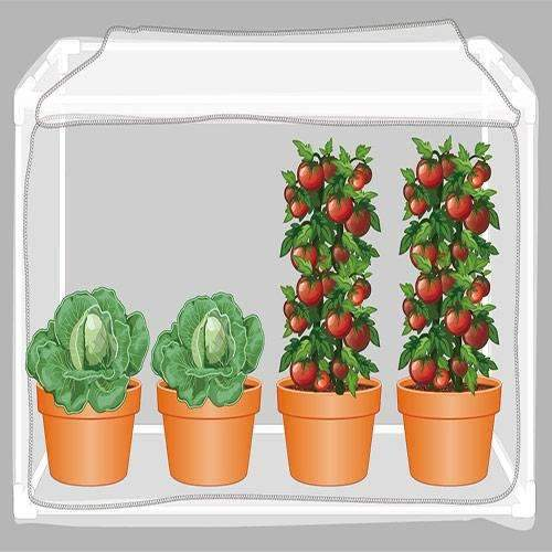 6-Sides Garden Insect Barrier Kit