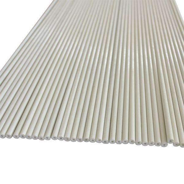 Lightweight EcoStake, 4', 5/16'' Dia, Ecofriendly Plant Stakes, White