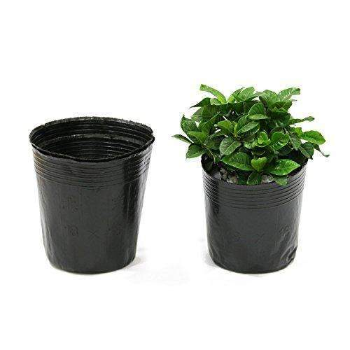 Plastic Nursery Pots Soft Black Planter Nutrition Pots, 100 pcs