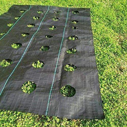 Landscape Easy-Plant Weed Block Mulch, 3.0oz, 3x25ft, Hole Dia-3''