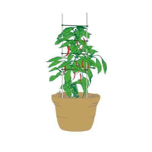 Trellis, Plant Ladder, Tomato Trellis, 2pcs of 5/16''48'' Stakes, 3 Pack