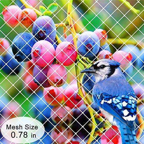 Garden Bird Netting, 10x15ft, White