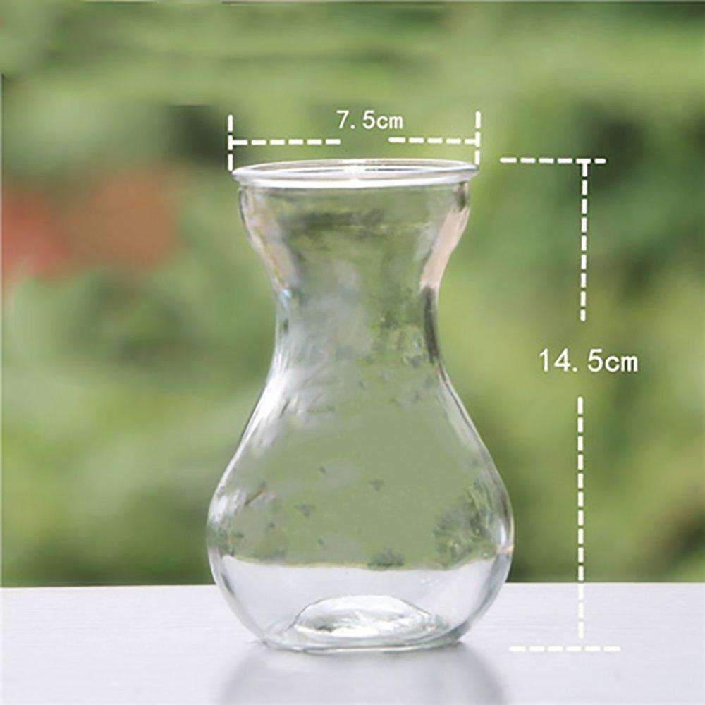 Glass Water Flower Pots, Planter Glass Bottles