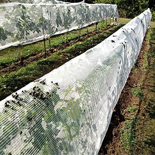 55GSM Anti Hail Netting, Diamond-Shaped