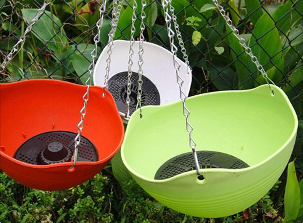 Hanging Planter, 10'' Dia and 6'' High, Multi Colors Included