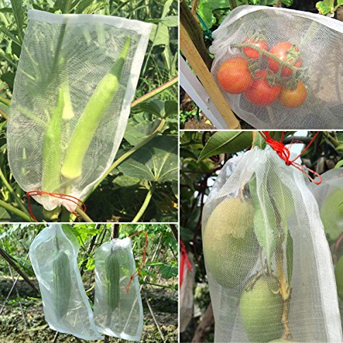 Net Bags, Various Sizes