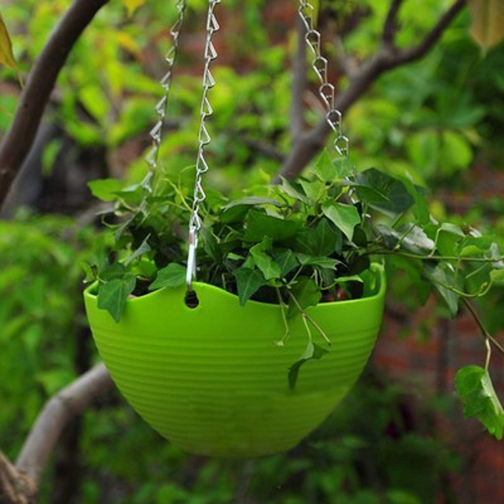 Hanging Planter, 10'' Diameter and 6'' High, Multi Colors Included