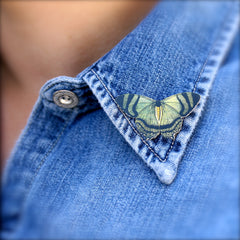 TP7043  Mountain Lake Butterfly Tiny Pin