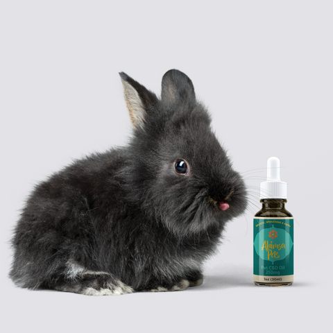 ahimsa pets cbd oil for rabbits, guinea pigs, and hamsters