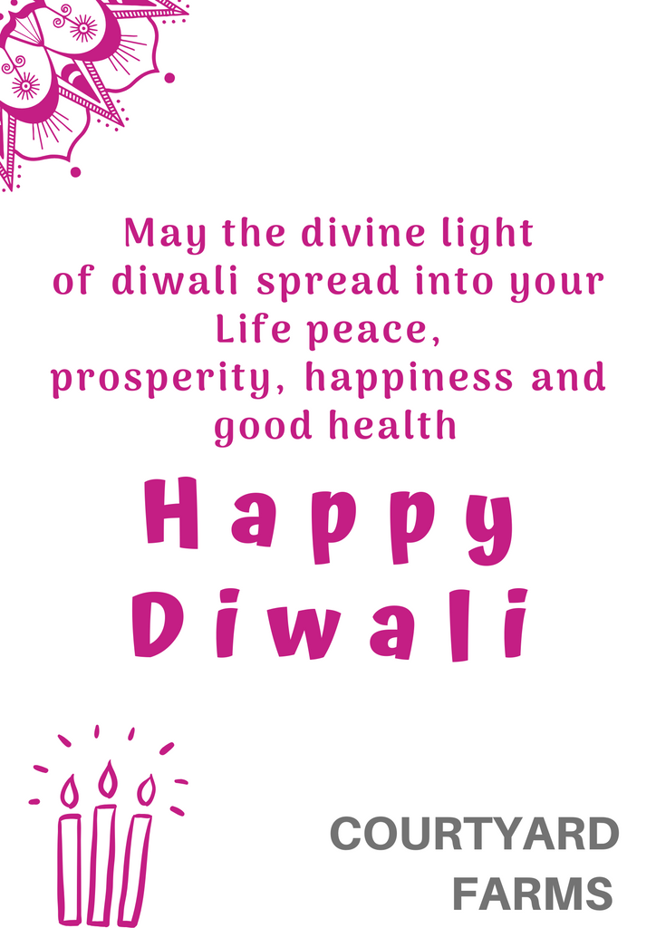 Wishing you all a very Happy, Prosperous & Safe Diwali!