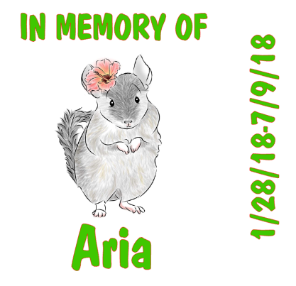 In Memory Of Chinchilla Ceramic Tile