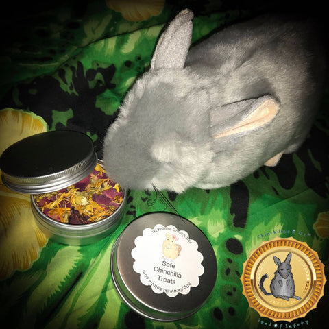 Healthy Chinchilla Treats Mix