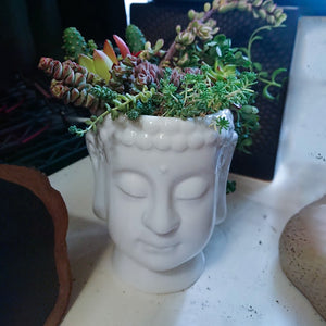 zen-flower-pot