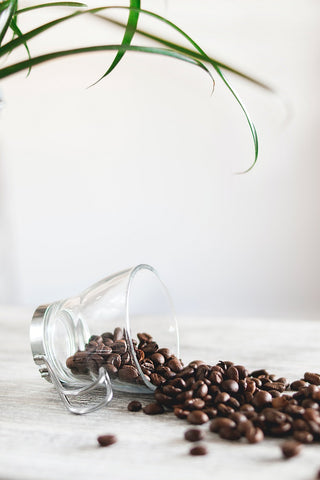 Birthplace of Coffee