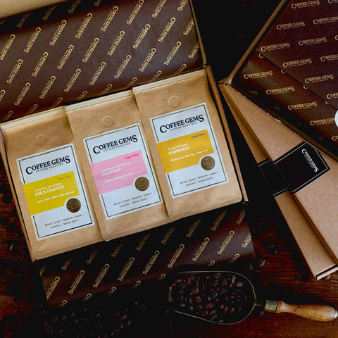 Tasting Selection Coffee Gift Box