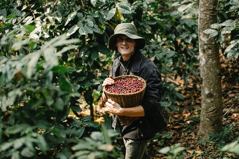 Meaning of single-origin to coffee consumers