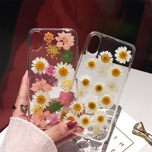 Handmade Daisy Dried Flowers Phone Case For iPhone