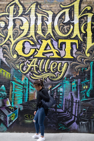 Black Cat Alley in Milwaukee