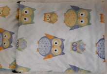 Load image into Gallery viewer, Blue Owls Minky Blanket