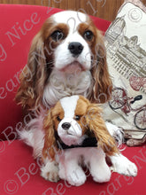 Load image into Gallery viewer, Blenheim Cavalier Toy