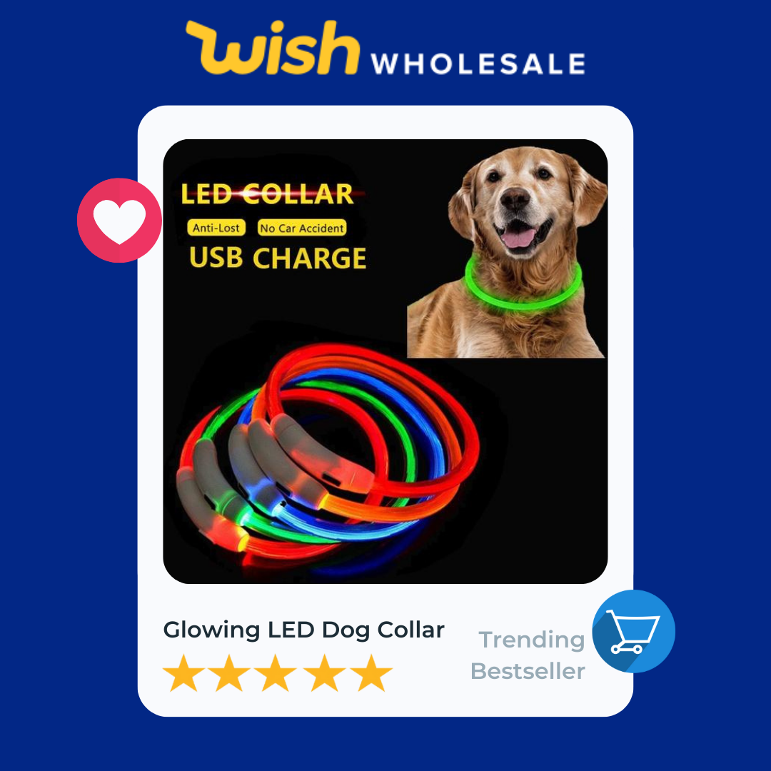 flashing dog collar is a high demand product in pets