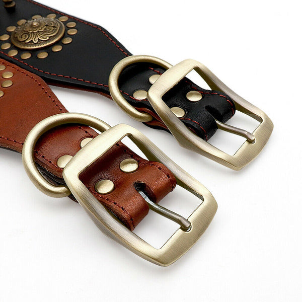 Classical Leather Dog Collar Large Dogs Pitbull Collar Heavy Duty Gold Buckle XL black
