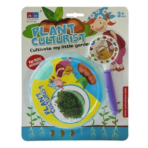 DIY Plant Experiment Kit