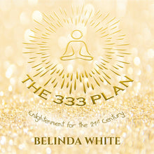 The 333 Plan  The Book