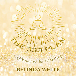 The 333 Plan Book