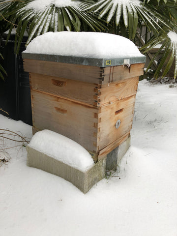 Ringwood Honey - Hives in the snow