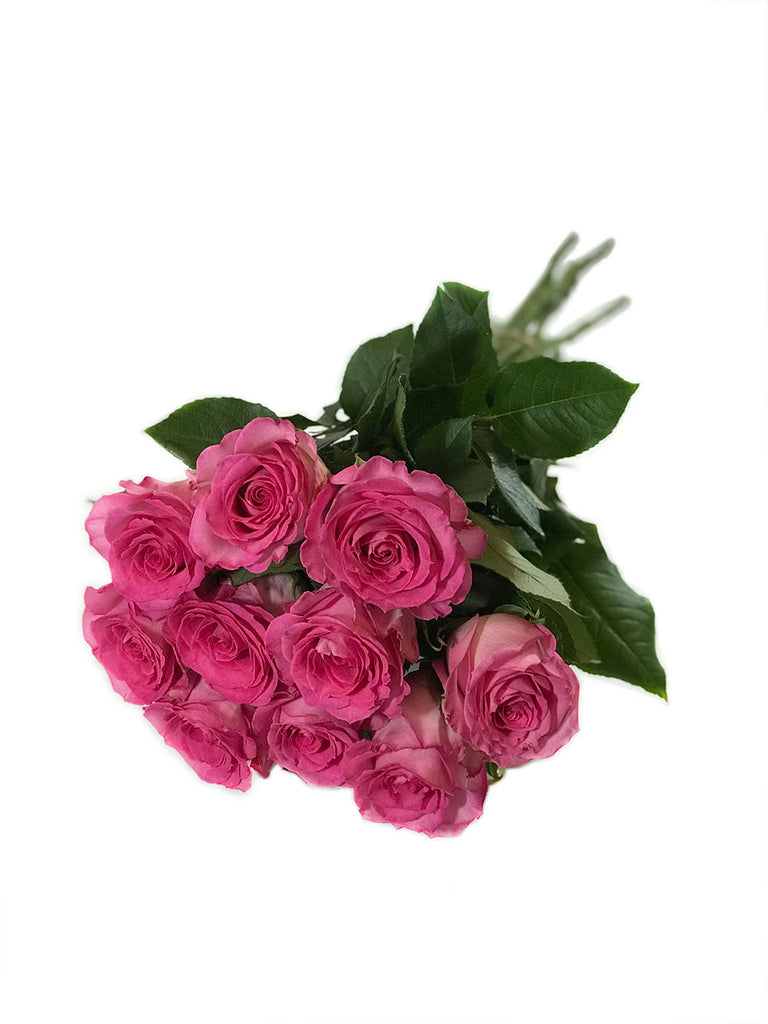 XPremium Rose Bouquet