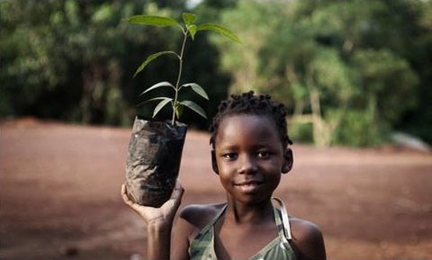 Tree planting inspires children everywhere