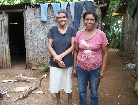 These sisters spend their days on the coffee plantations picking coffee cherries.