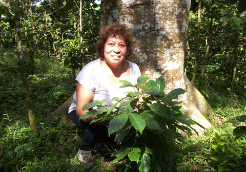 Elba with a young coffee tree in El Salvador.