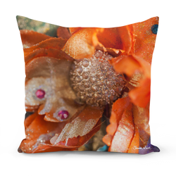 Orange flower cushion in small and medium cushions Sharon White art