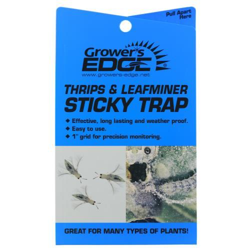 Grower's Edge Sticky Thrip Leafminer Trap 5/Pack (80/)