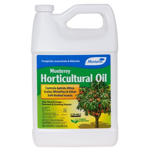 Monterey Horticultural Oil Gallon