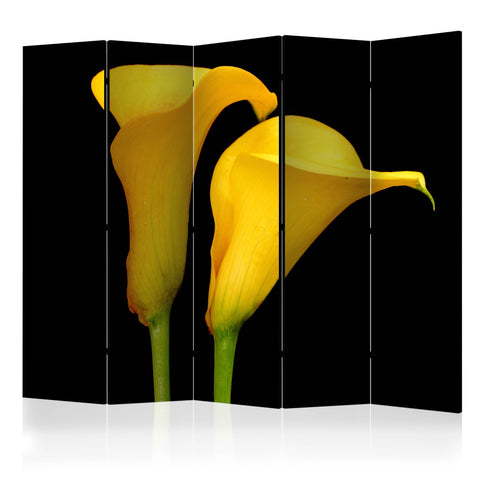 Artgeist Skærmvæg - Two yellow calla flowers on a black background II [Room Dividers] - NordlyHome.dk