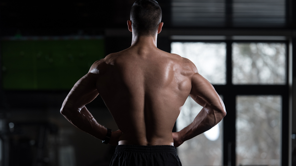 10 Best Lats Exercises to Build a Perfect Back - 10 Back ...