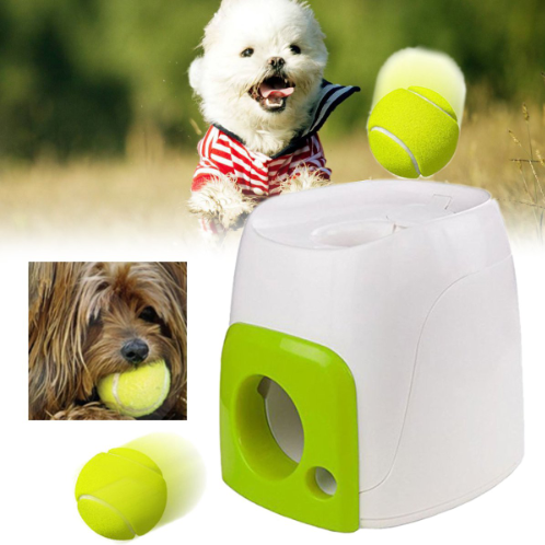 Fetch And Treat Dog Toy