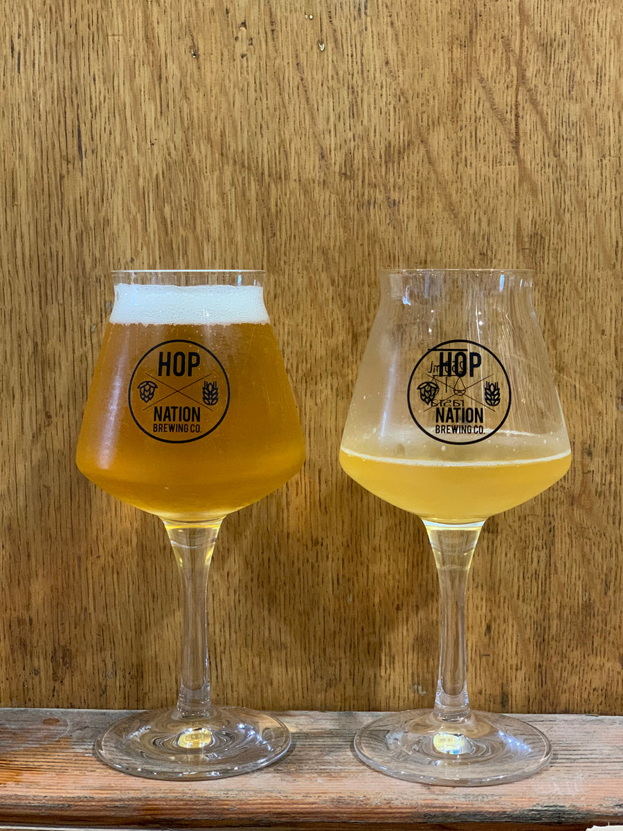 Hop Nation Rastal teku beer glass pair