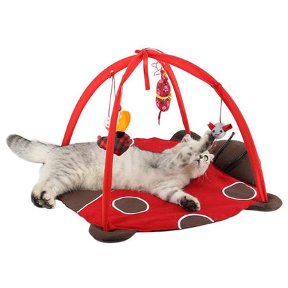 Cat Playhouse Bed Activity Center - Edgy Cat