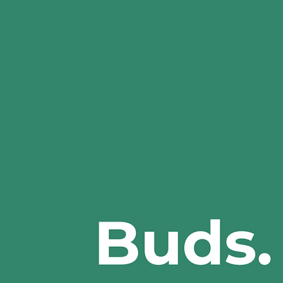 Buds-Earphones