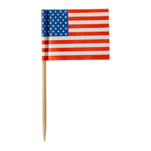 Toothpick Flag American, Case 144x10
