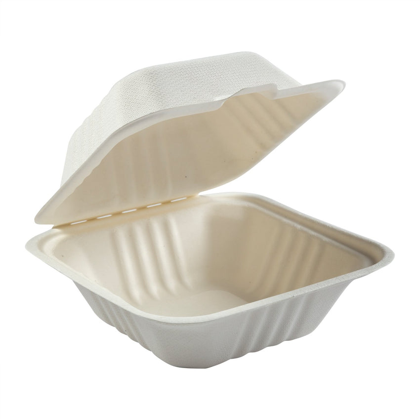 "Small Hinged Lid Containers 6"" x 6"" x 3.19"""